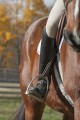 Riders boot in horse saddle stirrup