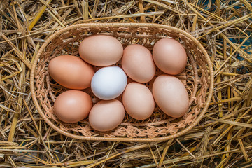 Eggs in wicker basket on table close-up.