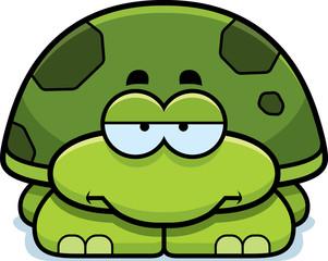 Bored Little Turtle