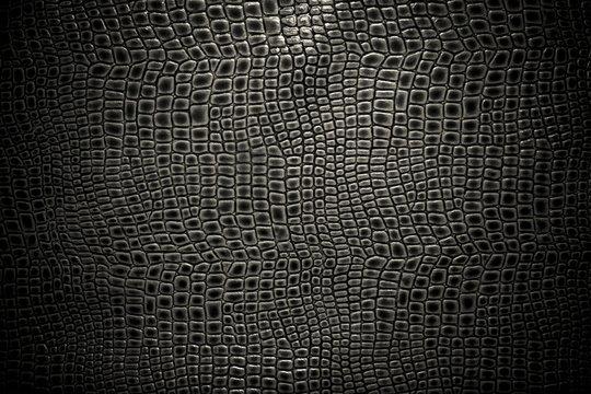 Crocodile leather texture background. Macro shot. Stock image.