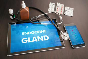 Endocrine gland (endocrine disease) diagnosis medical concept on tablet screen with stethoscope