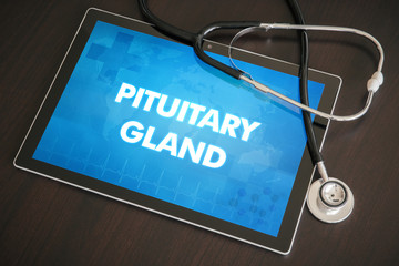Pituitary gland (endocrine disease related) diagnosis medical concept on tablet screen with stethoscope