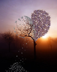abstract fantasy photo montage of broken heart tree