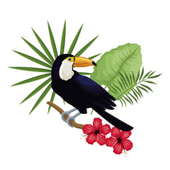 toucan hibiscus branch palm leaves vector illustration eps 10