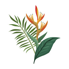 bird of paradise flower and leaves palm vector illustration eps 10