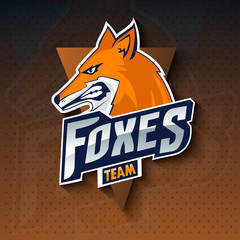 Foxes mascot for a team on a color background. Vector illustration. EPS10