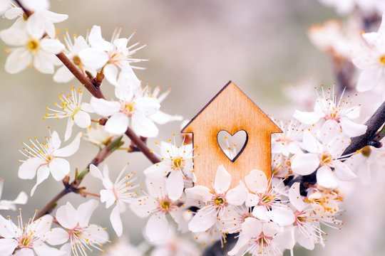 Wooden house with hole in form of heart surrounded by flowering branches of spring trees