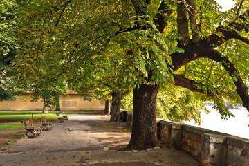 Embankment in the park on Kampa Island in Prague, Czech Republic.