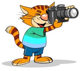 Cat photographer with photo camera