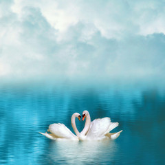 Two graceful swans in love reflecting in calm emerald water on foggy background