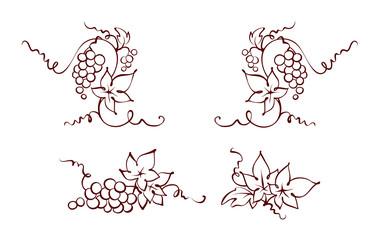 Design elements -- vine / Set graphic vector illustration, grapes drawing sketch