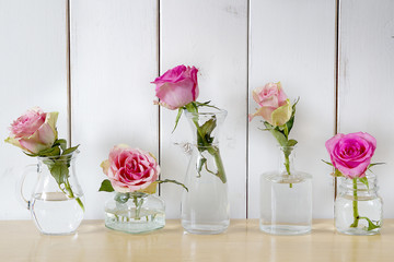 Five roses in separate glass vases in front of the white wooden wall.