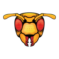 Bee Head illustration front view