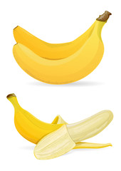Isolated bananas on white background vector illustration.