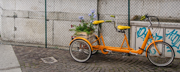 Orange Bicycle for Two with flowers in basket in Bologna Italy