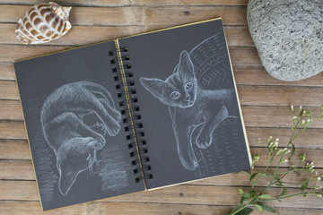 Cat by white chalk on black paper. Black paper notepad on wooden background.