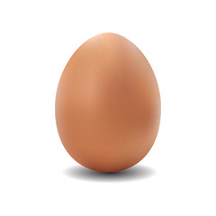 3d  isolated vector realistic brown egg on white background