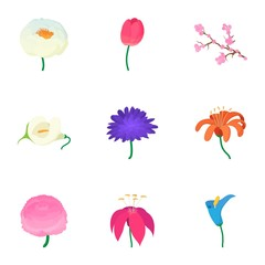 Spring flowers icons set, cartoon style