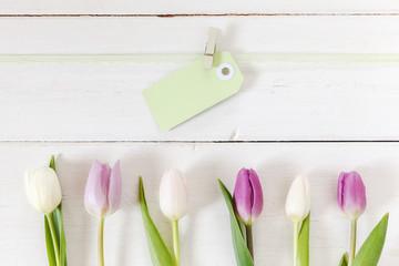 Weiße und violette Tulpen mit Textanhänger auf weißem Holz