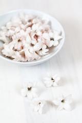 Frühlingsblüten und Schale auf weißem Holz