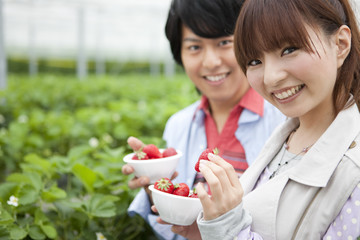 Young couple picking strawberries