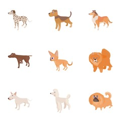 Doggy icons set, cartoon style