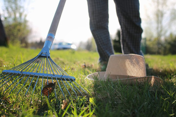 rakes to collect old grass