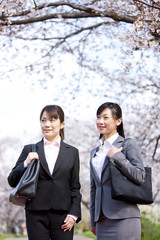 Businesswomen under cherry blossoms