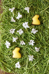 Fondant-Osterhasen mit Frühlingsblüten (Hyazinthen)  auf Ostergras