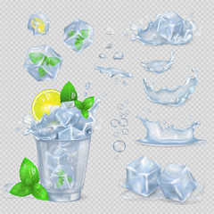 Glass with Water, Lemon Slice, Green Mint and Ice