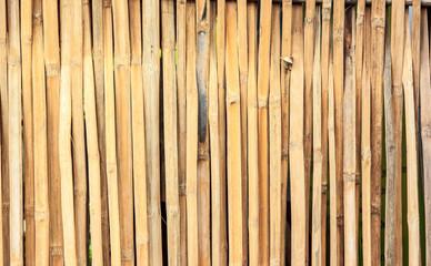 Wall  bamboos dry