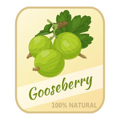 Vintage label with gooseberry isolated on white background in cartoon style. Vector illustration. Berries Collection.
