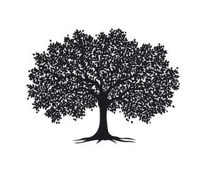 Black tree silhouette isolated vector illustration