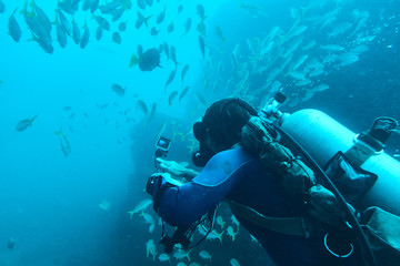 Scuba diver recording video at Baja California, Mexico