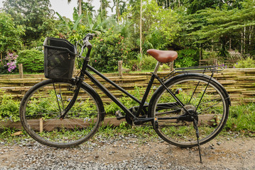 Old bicycle on a dirt road in the garden.