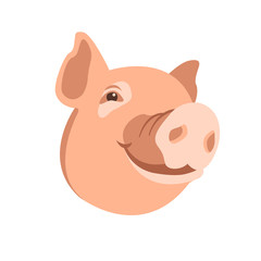 pig head vector illustration style Flat
