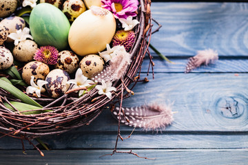 Nest with easter eggs on a blue wooden background