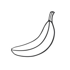 Vector illustration. Hand drawn doodle of not peeled banana. Healthy vegetarian food. Cartoon sketch. Decoration for greeting cards, posters, emblems, wallpapers