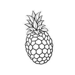 Vector illustration. Hand drawn doodle of pineapple. Healthy vegetarian food. Cartoon sketch. Decoration for greeting cards, posters, emblems, wallpapers
