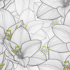 Monochrome seamless hand-drawing floral background with flower amaryllis. Vector illustration