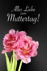 tulpen mit Text: Alles Liebe zum Muttertag