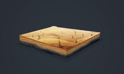 3d illustration of a soil slice, Desert with cacti, sand, dune isolated on dark background
