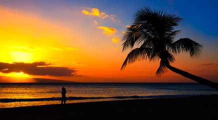 Tuinposter Centraal-Amerika Landen blue and orange sunset with girl