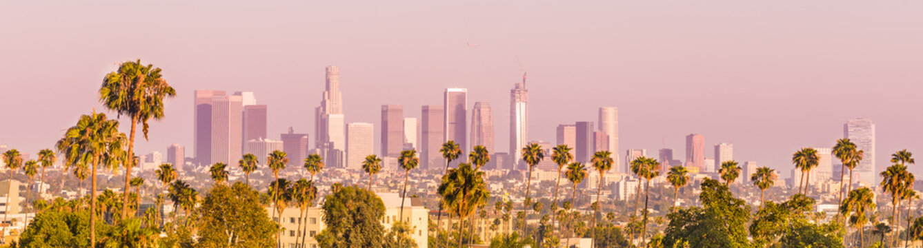 Downtown Los Angeles and Palm Trees at Sunset