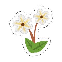 cartoon jasmine flower image vector illustration eps 10