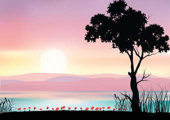 Beautiful nature at sunset, Vector illustrations