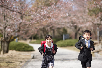 Elementary school girl and boy running under cherry blossoms