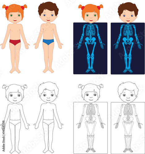 Kids Bodies By X Ray Educational Coloring Book For