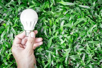 Energy saving light bulb on green grass background