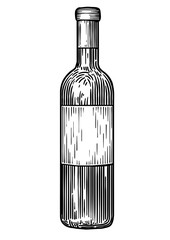 Wine bootle illustration, drawing, engraving, ink, line art, vector